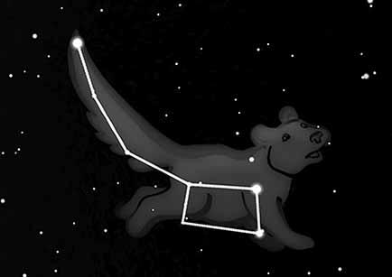 Lilla björnen